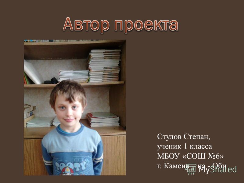 Стулов Степан, ученик 1 класса МБОУ «СОШ 6» г. Камень – на - Оби