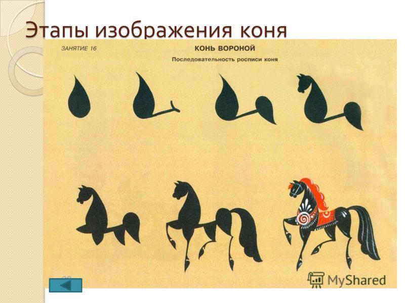 Этапы изображения коня