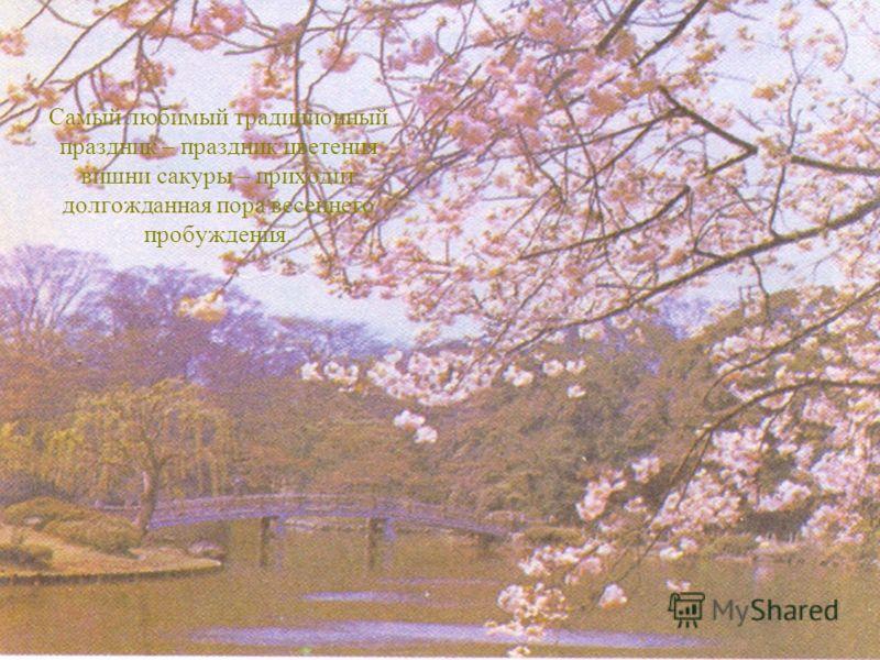 Самый любимый традиционный праздник – праздник цветения вишни сакуры – приходит долгожданная пора весеннего пробуждения.