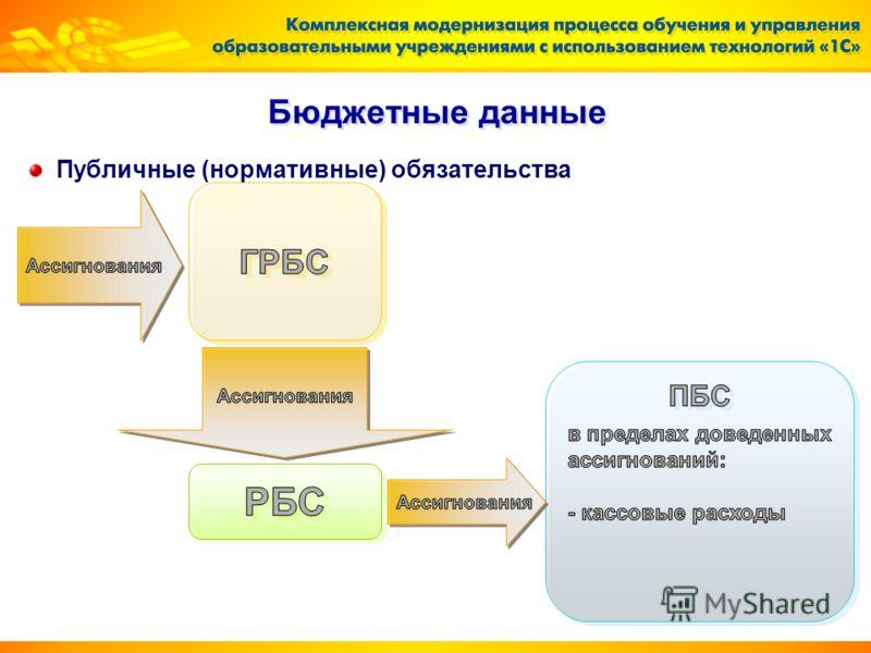 Бюджетные данные Публичные (нормативные) обязательства