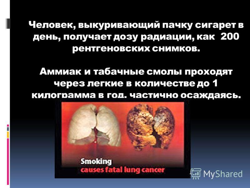 Человек, выкуривающий пачку сигарет в день, получает дозу радиации, как 200 рентгеновских снимков. Аммиак и табачные смолы проходят через легкие в количестве до 1 килограмма в год, частично осаждаясь.