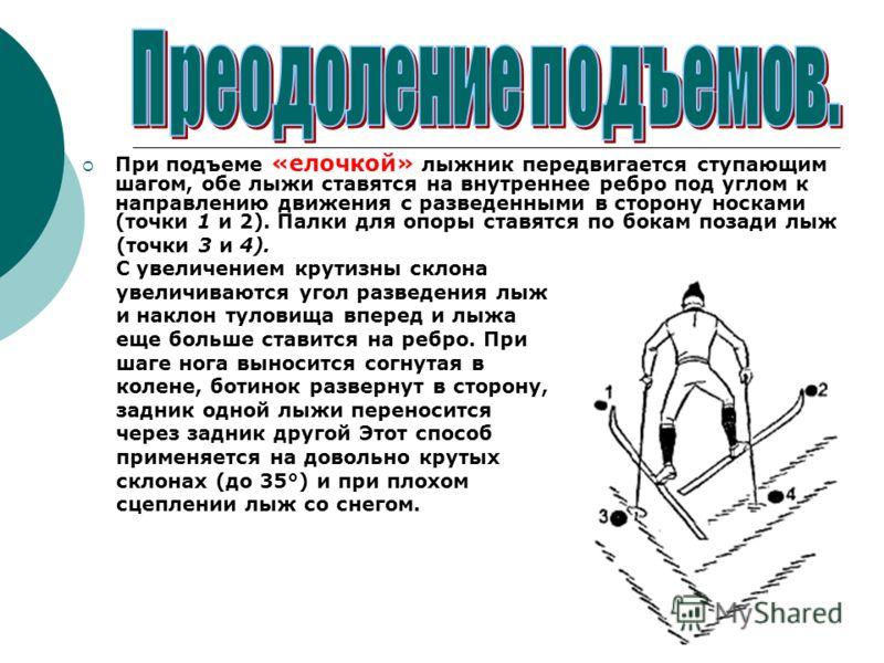 При подъеме «елочкой» лыжник передвигается ступающим шагом, обе лыжи ставятся на внутреннее ребро под углом к направлению движения с разведенными в сторону носками (точки 1 и 2). Палки для опоры ставятся по бокам позади лыж (точки 3 и 4). С увеличени