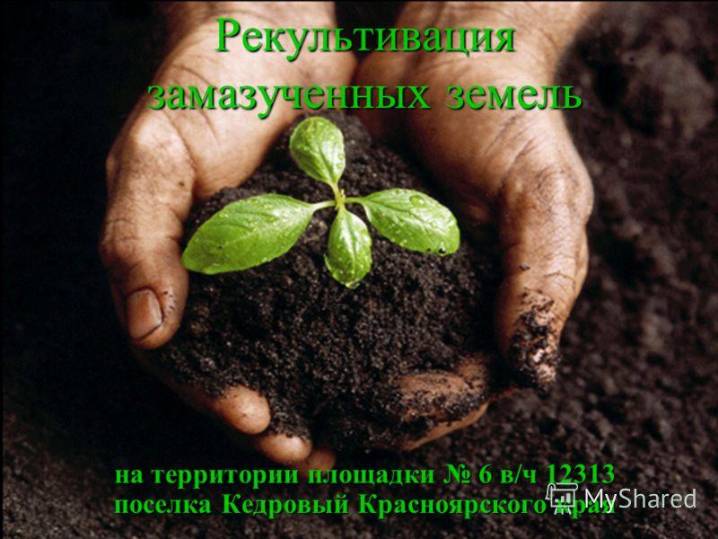 на территории площадки 6 в/ч 12313 поселка Кедровый Красноярского края Рекультивация замазученных земель