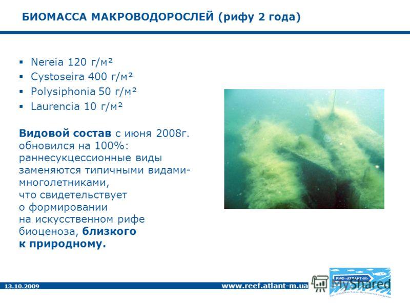 13.10.2009 www.reef.atlant-m.ua БИОМАССА МАКРОВОДОРОСЛЕЙ (рифу 2 года) Nereia 120 г/м² Cystoseira 400 г/м² Polysiphonia 50 г/м² Laurencia 10 г/м² Видовой состав с июня 2008г. обновился на 100%: раннесукцессионные виды заменяются типичными видами- мно