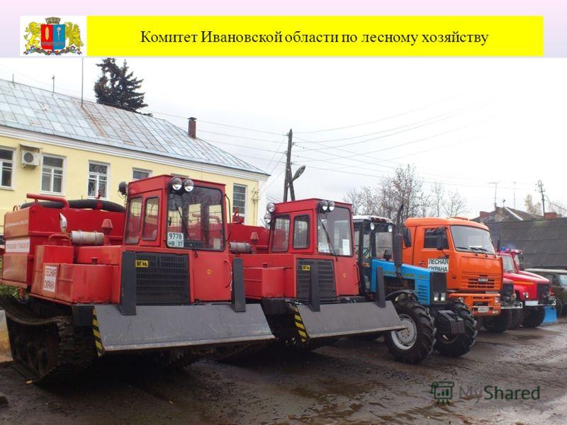 Комитет Ивановской области по лесному хозяйству