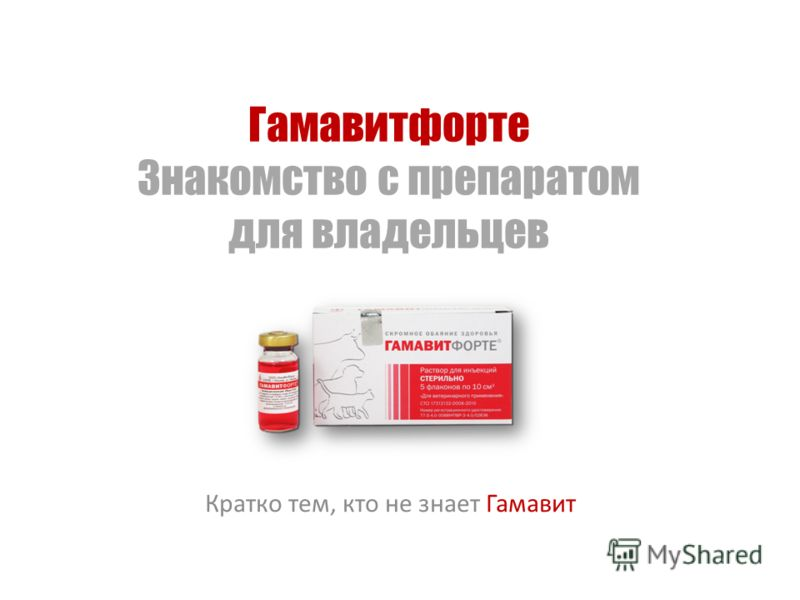 Гамавитфорте Знакомство с препаратом для владельцев Кратко тем, кто не знает Гамавит