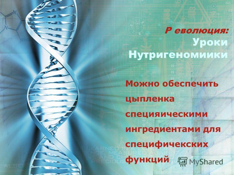Р еволюция: Уроки Нутригеномиики Можно обеспечить цыпленка специяическими ингредиентами для специфичекских функций