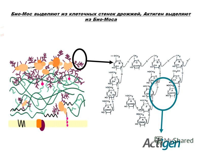 Био-Мос выделяют из клеточных стенок дрожжей, Актиген выделяют из Био-Моса