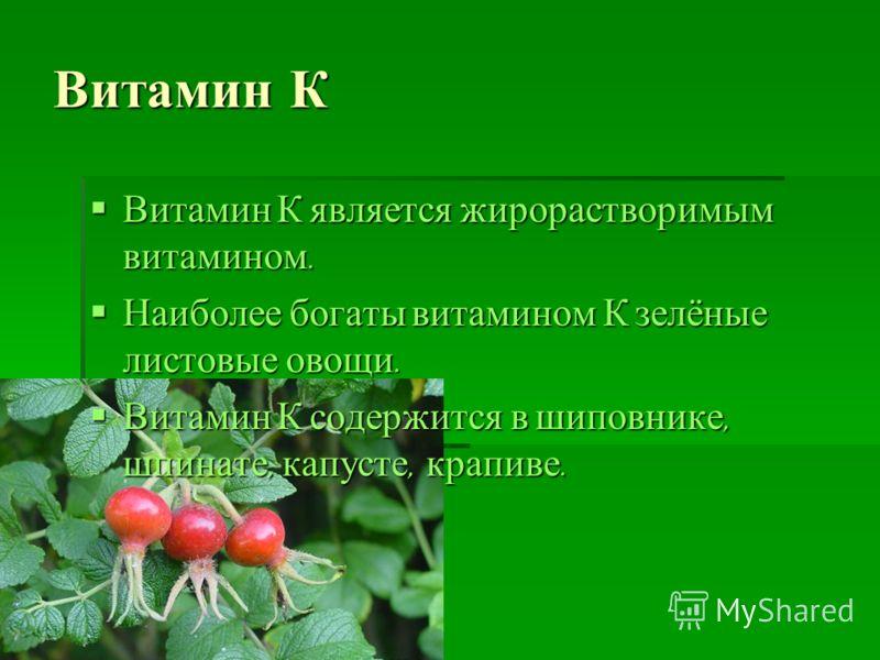 Витамин К Витамин К является жирорастворимым витамином. Витамин К является жирорастворимым витамином. Наиболее богаты витамином К зелёные листовые овощи. Наиболее богаты витамином К зелёные листовые овощи. Витамин К содержится в шиповнике, шпинате, к