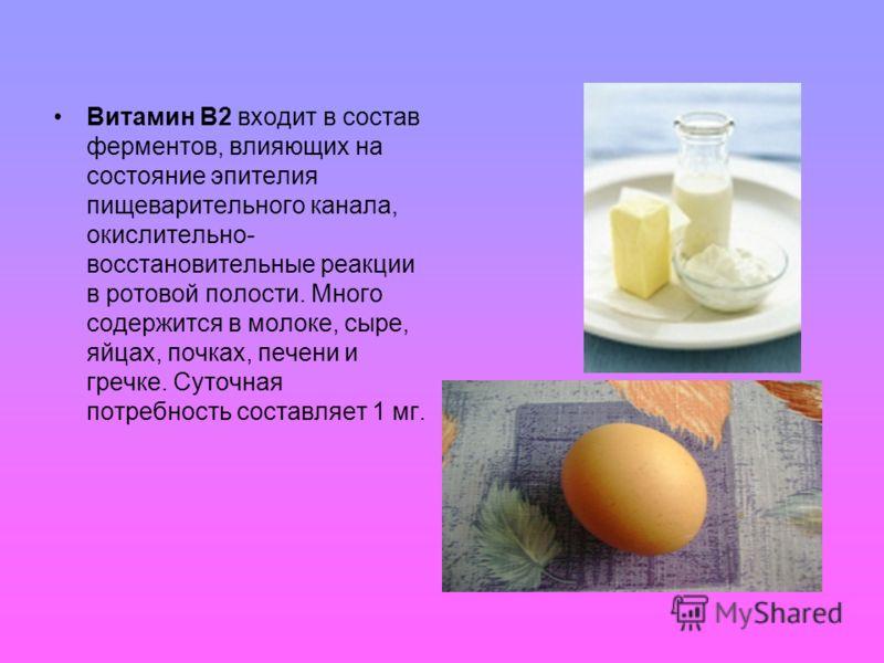 Витамин В2 входит в состав ферментов, влияющих на состояние эпителия пищеварительного канала, окислительно- восстановительные реакции в ротовой полости. Много содержится в молоке, сыре, яйцах, почках, печени и гречке. Суточная потребность составляет
