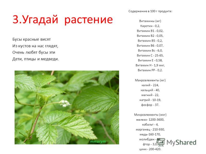 3.Угадай растение Бусы красные висят Из кустов на нас глядят, Очень любят бусы эти Дети, птицы и медведи. Содержание в 100 г продукта: Витамины (мг) Каротин - 0,2, Витамин В1 - 0,02, Витамин В2 - 0,05, Витамин В5 - 0,2, Витамин В6 - 0,07, Витамин Вс