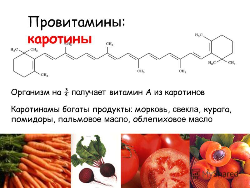 Провитамин ы : каротин ы Каротинам ы б о гат ы продукт ы: морк о в ь, свекла, курага, помидор ы, пальмо вое масло, обл е пихов ое масло Организм на ¾ получает витамин А и з каротин о в