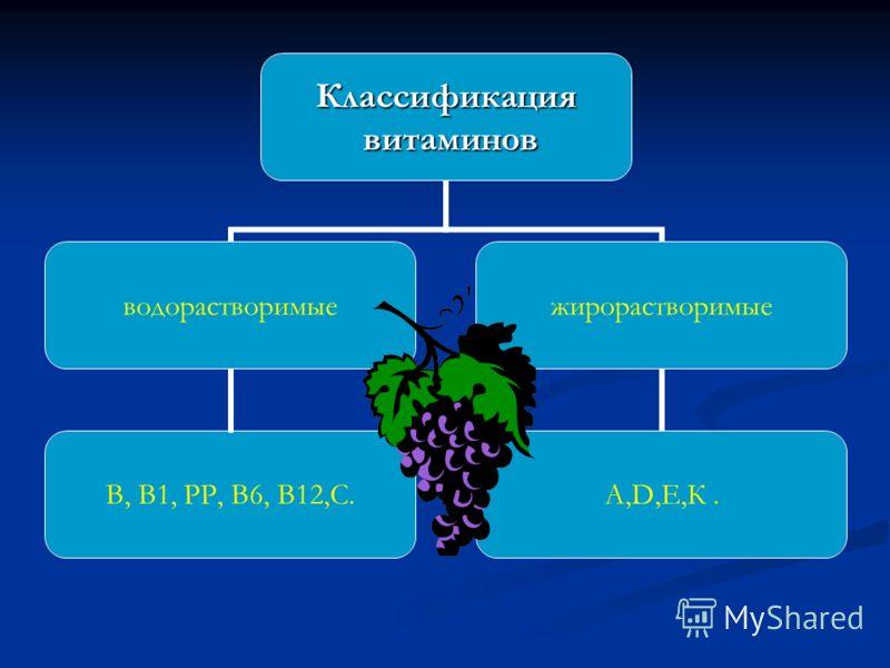Классификация витаминов витаминов водорастворимые В, В1, РР, В6, В12,С. жирорастворимые А,D,Е,К.