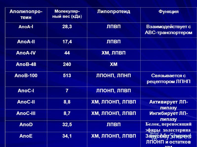 Аполипопро- теин Молекуляр- ный вес (кДа) Липопротеид Функция АпоA -I28,3ЛПВП Взаимодействует с АВС-транспортером АпоA-II17,4ЛПВП АпоA-IV44ХМ, ЛПВП АпоB-48240ХМ АпоB-100513ЛПОНП, ЛПНП Связывается с рецептором ЛПНП АпоC-I7ЛПОНП, ЛПВП АпоC-II8,8ХМ, ЛПО