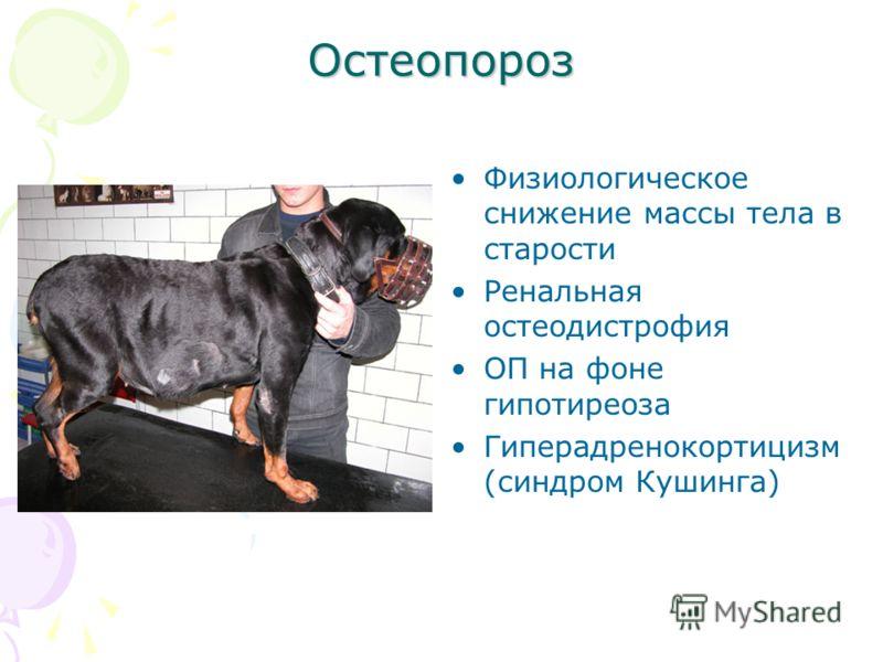 Остеопороз Физиологическое снижение массы тела в старости Ренальная остеодистрофия ОП на фоне гипотиреоза Гиперадренокортицизм (синдром Кушинга)