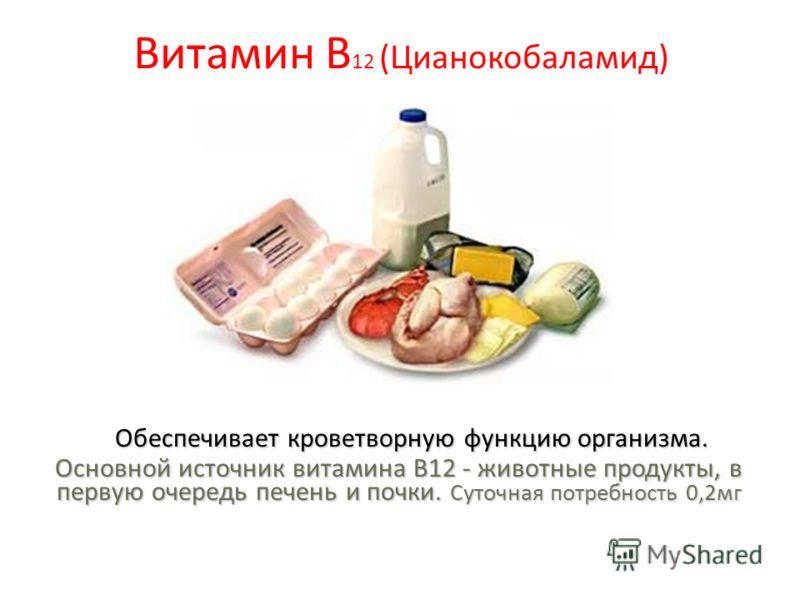 Витамин В 12 (Цианокобаламид) Обеспечивает кроветворную функцию организма. Обеспечивает кроветворную функцию организма. Основной источник витамина B12 - животные продукты, в первую очередь печень и почки. Суточная потребность 0,2мг