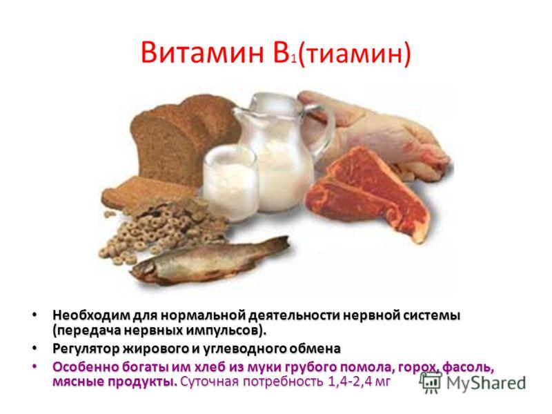 Витамин В 1 (тиамин) Необходим для нормальной деятельности нервной системы (передача нервных импульсов). Необходим для нормальной деятельности нервной системы (передача нервных импульсов). Регулятор жирового и углеводного обмена Регулятор жирового и