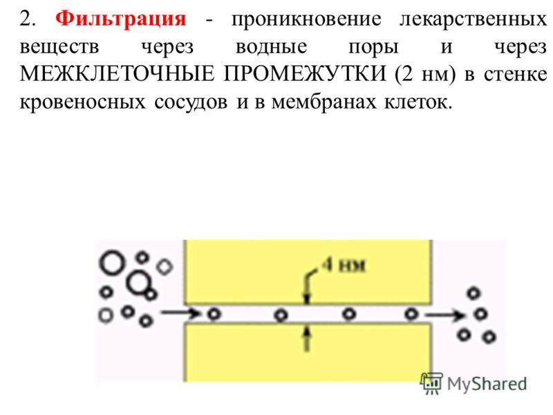 2. Фильтрация - проникновение лекарственных веществ через водные поры и через МЕЖКЛЕТОЧНЫЕ ПРОМЕЖУТКИ (2 нм) в стенке кровеносных сосудов и в мембранах клеток.