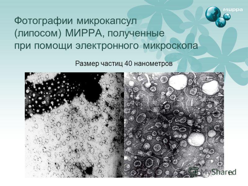 11 Фотографии микрокапсул (липосом) МИРРА, полученные при помощи электронного микроскопа Размер частиц 40 нанометров