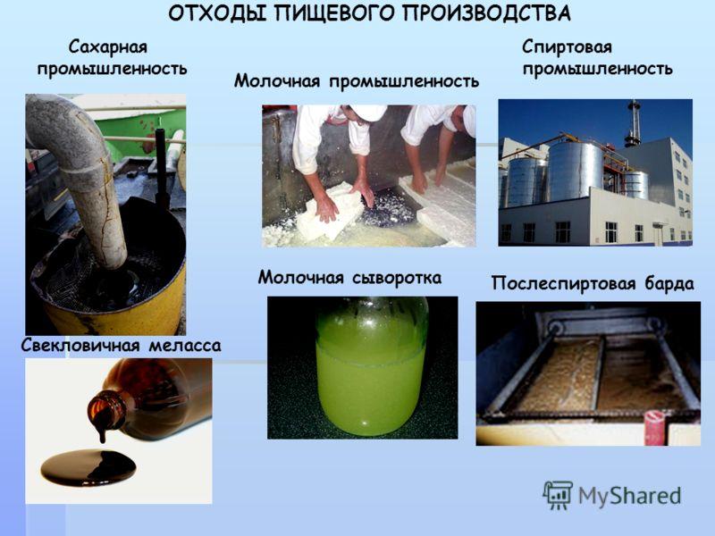Сахарная промышленность Молочная промышленность Спиртовая промышленность ОТХОДЫ ПИЩЕВОГО ПРОИЗВОДСТВА Молочная сыворотка Свекловичная меласса Послеспиртовая барда