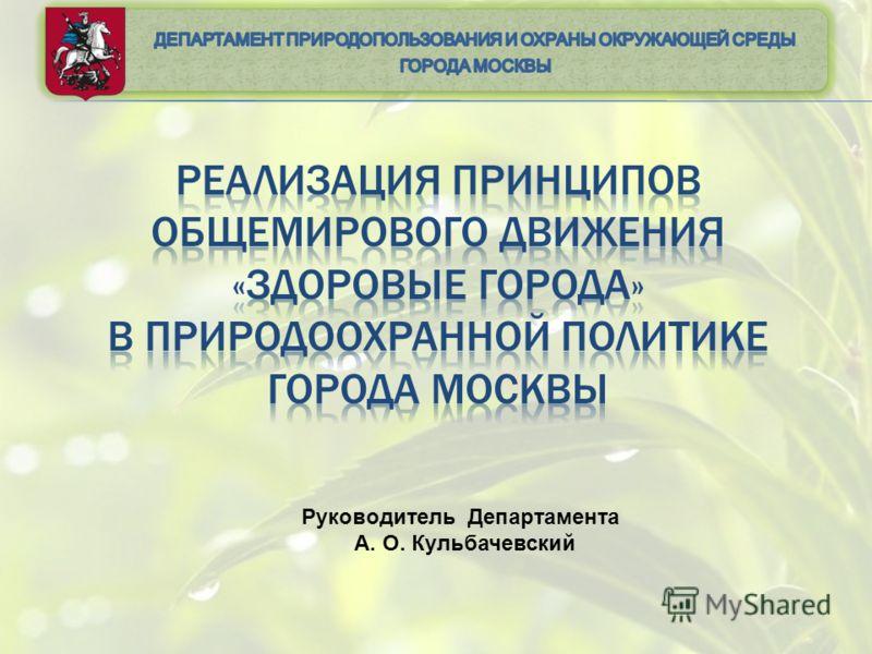 Руководитель Департамента А. О. Кульбачевский