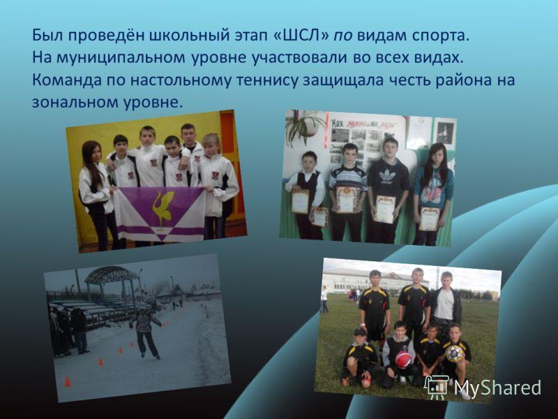 Был проведён школьный этап «ШСЛ» по видам спорта. На муниципальном уровне участвовали во всех видах. Команда по настольному теннису защищала честь района на зональном уровне.