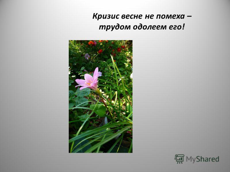 Кризис весне не помеха – трудом одолеем его!