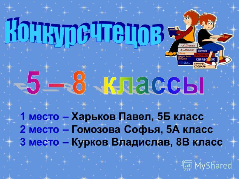 1 место – Харьков Павел, 5Б класс 2 место – Гомозова Софья, 5А класс 3 место – Курков Владислав, 8В класс