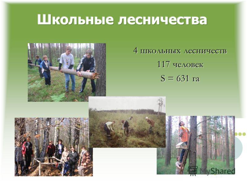 4 школьных лесничеств 117 человек S = 631 га