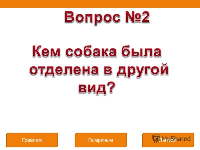 Граалем Линеем Гагариным