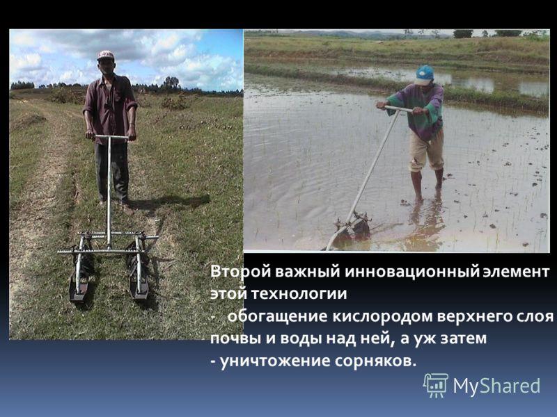 Второй важный инновационный элемент этой технологии -обогащение кислородом верхнего слоя почвы и воды над ней, а уж затем - уничтожение сорняков.