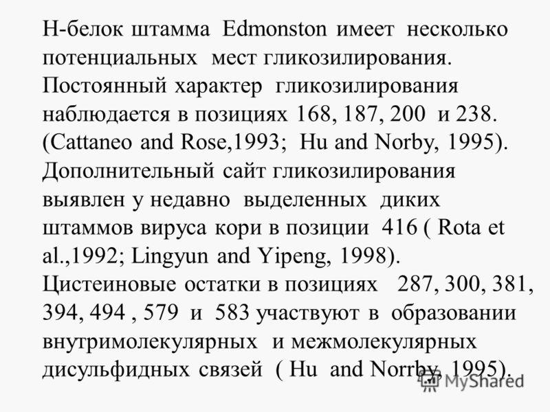 Н-белок штамма Edmonston имеет несколько потенциальных мест гликозилирования. Постоянный характер гликозилирования наблюдается в позициях 168, 187, 200 и 238. (Сattaneo and Rose,1993; Hu and Norby, 1995). Дополнительный сайт гликозилирования выявлен