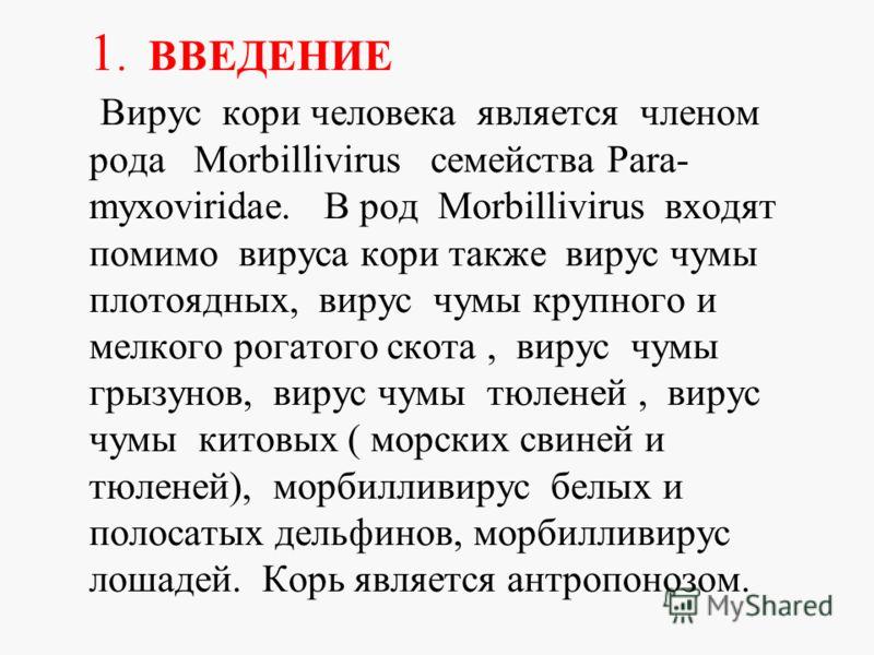 1. ВВЕДЕНИЕ Вирус кори человека является членом рода Morbillivirus семейства Para- myxoviridae. В род Morbillivirus входят помимо вируса кори также вирус чумы плотоядных, вирус чумы крупного и мелкого рогатого скота, вирус чумы грызунов, вирус чумы т