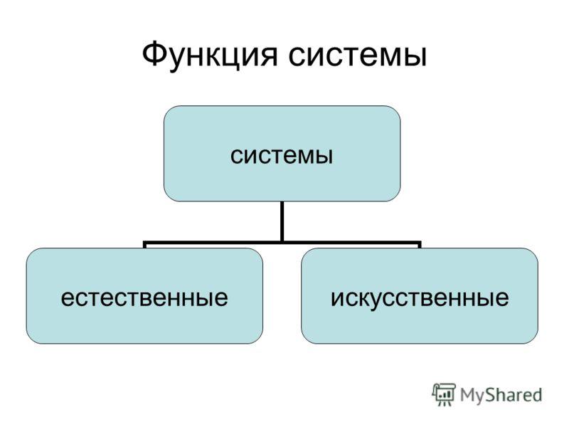 Функция системы системы естественныеискусственные