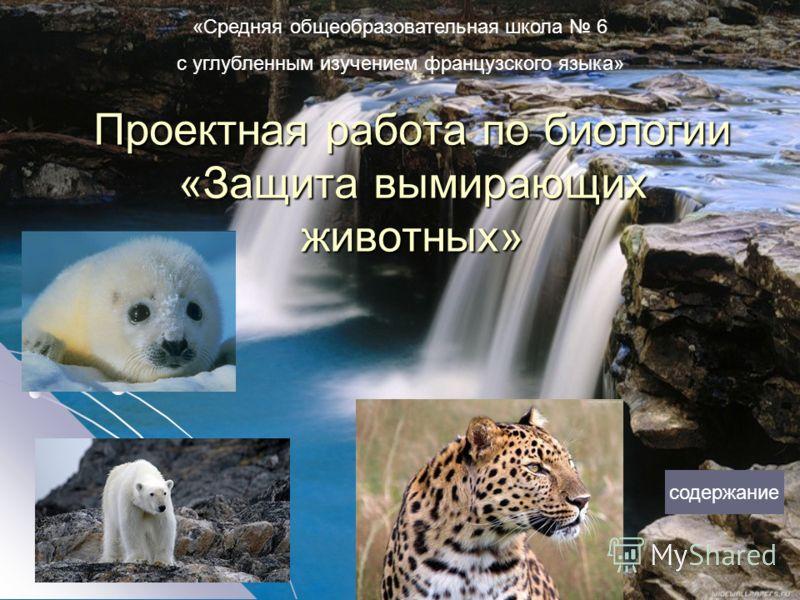Проектная работа по биологии «Защита вымирающих животных» содержание «Средняя общеобразовательная школа 6 с углубленным изучением французского языка»