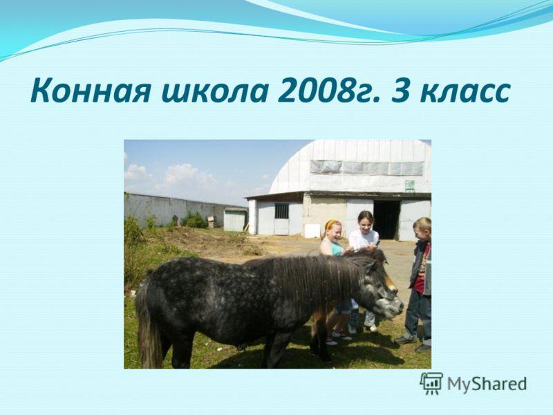 Конная школа 2008г. 3 класс