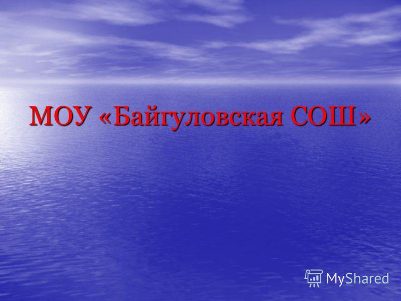 МОУ «Байгуловская СОШ»