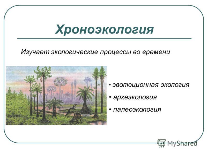 Хроноэкология Изучает экологические процессы во времени эволюционная экология археэкология палеоэкология