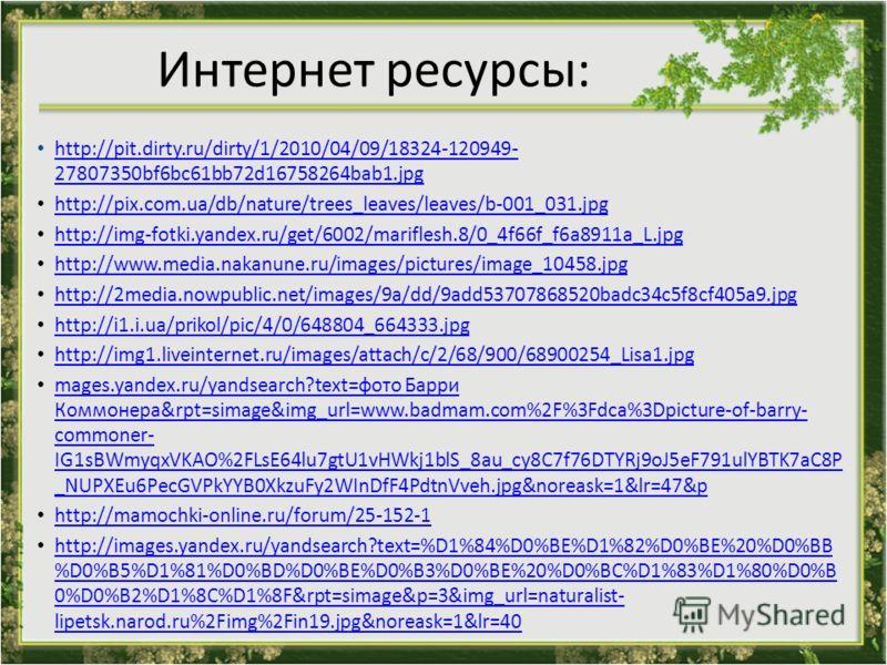 Интернет ресурсы: http://pit.dirty.ru/dirty/1/2010/04/09/18324-120949- 27807350bf6bc61bb72d16758264bab1.jpg http://pit.dirty.ru/dirty/1/2010/04/09/18324-120949- 27807350bf6bc61bb72d16758264bab1.jpg http://pix.com.ua/db/nature/trees_leaves/leaves/b-00