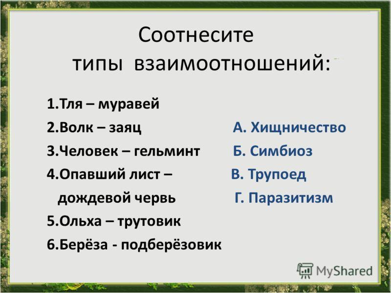 Соотнесите типы взаимоотношений: 1.Тля – муравей 2.Волк – заяц А. Хищничество 3.Человек – гельминт Б. Симбиоз 4.Опавший лист – В. Трупоед дождевой червь Г. Паразитизм 5.Ольха – трутовик 6.Берёза - подберёзовик