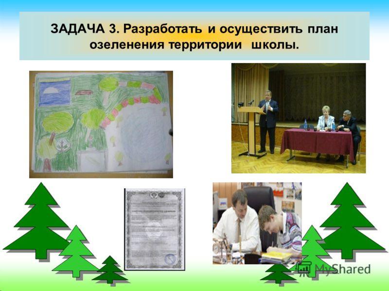 ЗАДАЧА 3. Разработать и осуществить план озеленения территории школы.