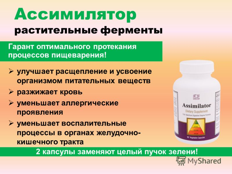 Ассимилятор растительные ферменты улучшает расщепление и усвоение организмом питательных веществ разжижает кровь уменьшает аллергические проявления уменьшает воспалительные процессы в органах желудочно- кишечного тракта 2 капсулы заменяют целый пучок