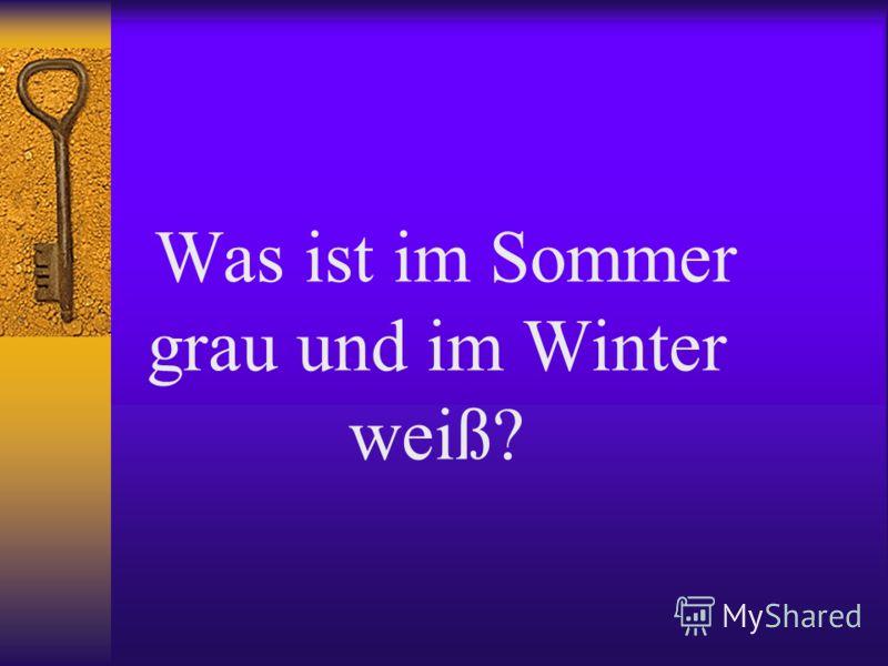 Was ist im Sommer grau und im Winter weiß?