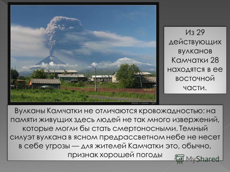 Из 29 действующих вулканов Камчатки 28 находятся в ее восточной части. Вулканы Камчатки не отличаются кровожадностью: на памяти живущих здесь людей не так много извержений, которые могли бы стать смертоносными. Темный силуэт вулкана в ясном предрассв