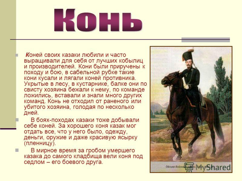 Коней своих казаки любили и часто выращивали для себя от лучших кобылиц и производителей. Кони были приручены к походу и бою, в сабельной рубке такие кони кусали и лягали коней противника. Укрытые в лесу, в кустарнике, балке они по свисту хозяина беж