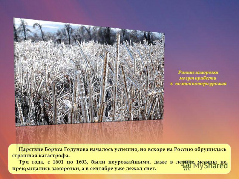 Царствие Бориса Годунова началось успешно, но вскоре на Россию обрушилась страшная катастрофа. Три года, с 1601 по 1603, были неурожайными, даже в летние месяцы не прекращались заморозки, а в сентябре уже лежал снег. Ранние заморозки могут привести к
