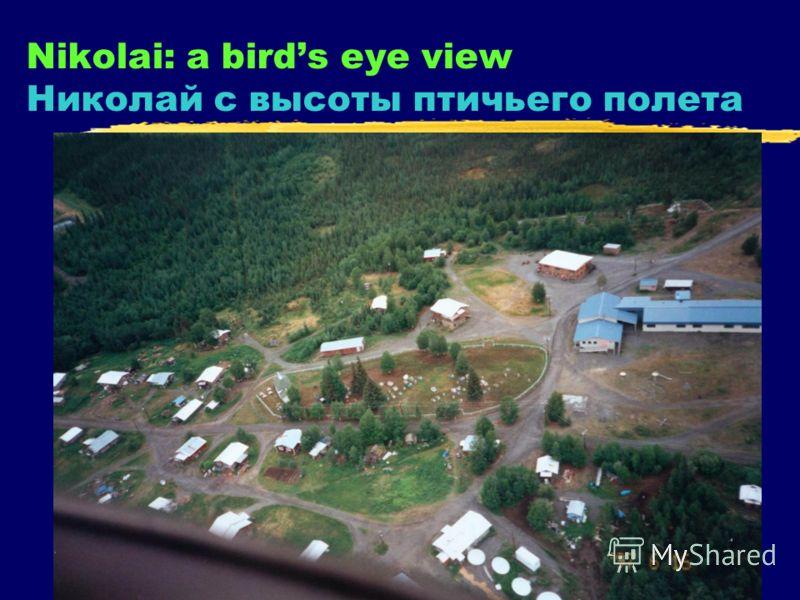 3 Nikolai: a birds eye view Николай с высоты птичьего полета