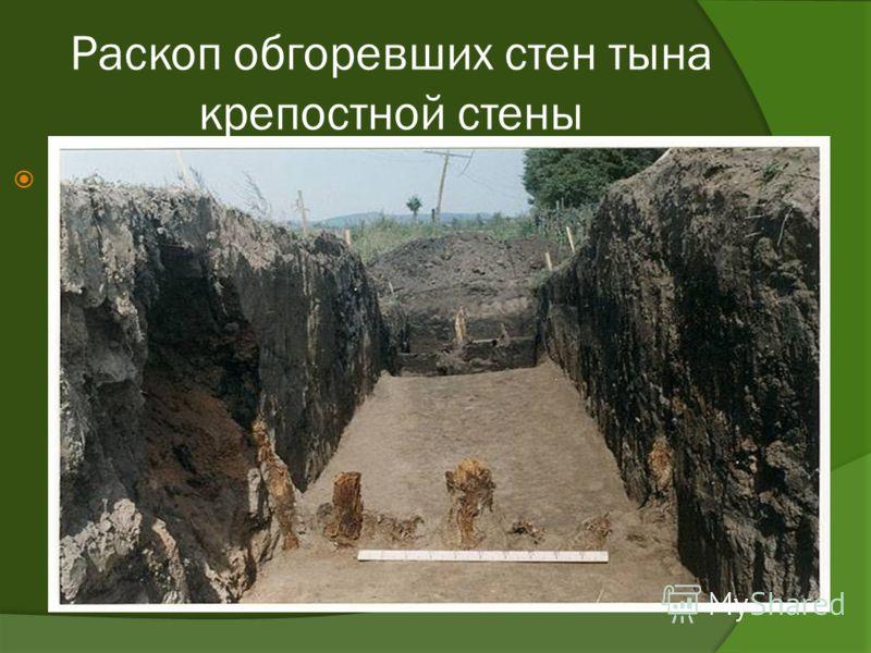 Раскоп обгоревших стен тына крепостной стены j j