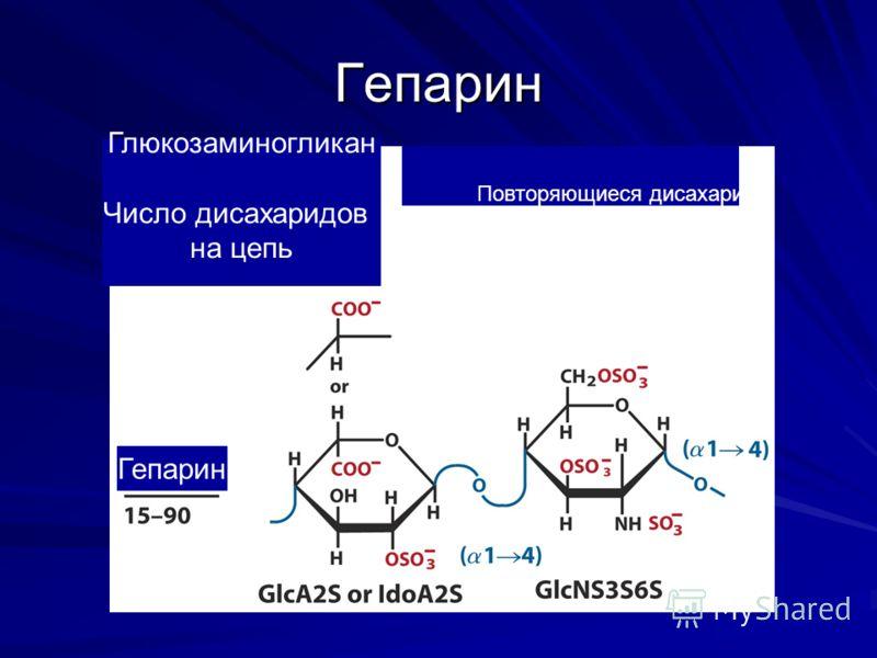 Гепарин Повторяющиеся дисахариды Глюкозаминогликан Число дисахаридов на цепь Гепарин