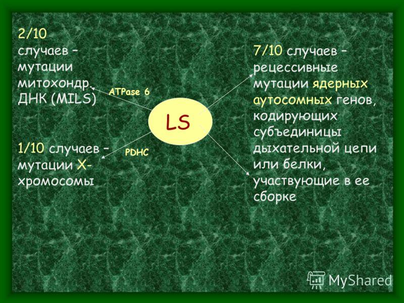 LS 2/10 случаев – мутации митохондр. ДНК (MILS) 1/10 cлучаев – мутации Х- хромосомы ATPase 6 PDHC 7/10 cлучаев – рецессивные мутации ядерных аутосомных генов, кодирующих субъединицы дыхательной цепи или белки, участвующие в ее сборке